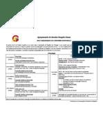 Programa CCR[1]