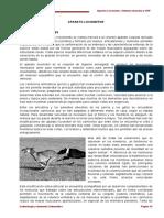 2015 Guia Nueva (Tomo 1-2) (1)