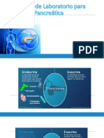 Estudios de Laboratorio Para Función Pancreática