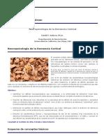 Modulo Neuropsicología de La Demencia Cortical (1)