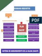 REQUISITOS SISTEMA HACCP.docx