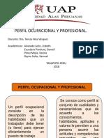 perfil ocupacional y profesional