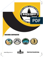 Brochure Black Forest Security Group 2018