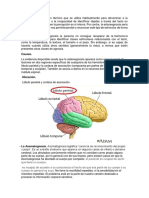Exposision Neuro 04