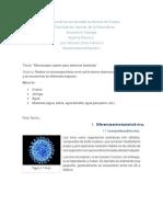 Reporte Practica 1 (Anatomia y Fisiologia)