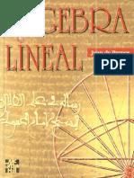 Álgebra Lineal - 1ª Edición - Juan de Burgos