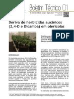 Deriva de herbicidas auxínicos (2,4-D e Dicamba) em olerícolas