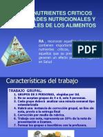 Ficha Nutrientes Criticos 2017 FINAL