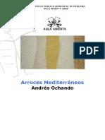 ARROCES.pdf