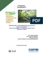 FormulaciónProyectos RR NN.pdf