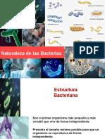 Clase 2 Bacteriología.ppt