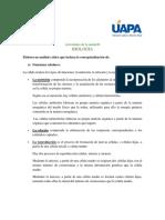 Activicdad_II.docx