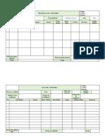 CORRECCION Programas de Auditoria y Plan de Auditoria