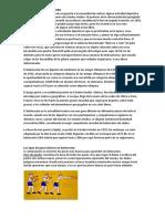 Historia Del Baloncestoy Pases
