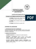 Programas de Laboratorio -Ivonne Flores 2012