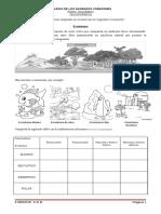 anexoecositema-100807081719-phpapp01.pdf