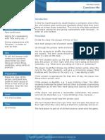 convince-me (past continuous).pdf