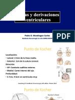 Derivaciones ventriculares
