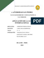 derecho internaional.docx
