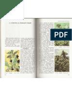 Otrovne ili škodljive biljke