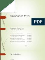 38728 Salmonella Thypi