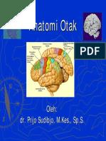ANATOMI+OTA.pdf