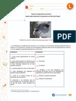 """""""Zorros osados están atacando a los guanacos de Tierra del Fuego""""..pdf"""