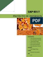 Proyecto de Inversionnnnn Guiaaaaa