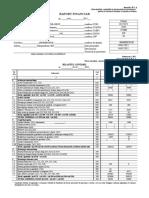Raport Fin Anual Succint