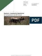 Pandaclub Nashorn Asiatische Nashoerner De