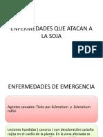 Enfermedade de soja-1.pdf