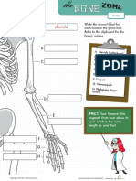 Learn Bone Zone Arms