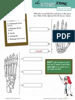 Learn Bone Zone Hands Feet 2