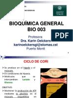 19 Ciclo de Cori y Ciclo Del Glioxilato Ko 22-10-2015
