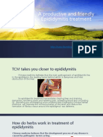 A Productive and Friendly Epididymitis Treatment