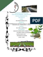 MEJORAMIENTO DE SISTEMA DE RIEGO.docx