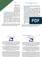 DESARROLLANDO LAS 4 HABILIDADES folleto.docx