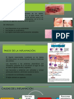 Inflamacion Expo Rosa