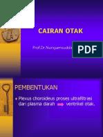 CAIRAN OTAK