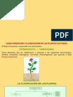 Clasificacion de plantas.pdf