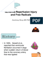 Ischemic Reperfusion Injury