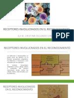 6.3 Receptores Involucrados en El Reconocimiento