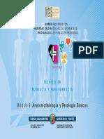 ANAT_BASICAS_san_t_far_par_ud_0061_c.pdf