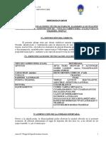 8 Pliego de Especificaciones Tecnicas PDF