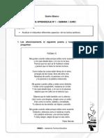 5 BASICO - GUIA Genero Lirico