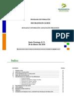 DECORADOR EN GLOBOS QAC.pdf