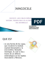meningoceleymielomeningocele-120517000340-phpapp01