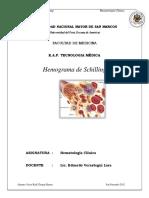 100929464-Hemograma-Completo.docx