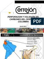 Proceso de P v Cerrejon 2013