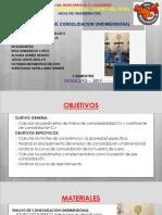 diapositivas consolidacion unidimensional.pptx